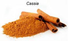 CASSIA ESSENTIAL