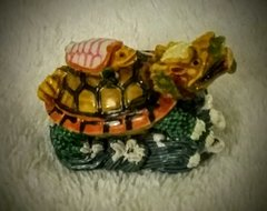 Miniature Dragon-Tortoise (微型龙龟)