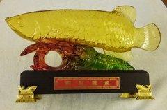 Large Arowana (大龙鱼)