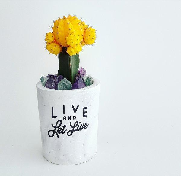 Cement Planter - Live & Let Live