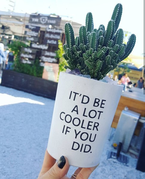 Cement Planter- I'd Be A Lot Cooler If You Did