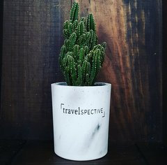 Cement Planter - Travelspective