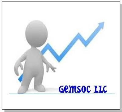 General Management Systems and Organizational Cybernetics, LLC   DBA GEMSOC LLC