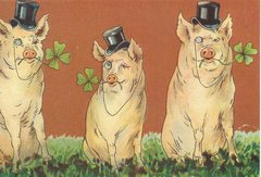 'The Good Luck Piggies' Offbeat Vintage Pig Greeting Card