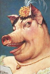 'The Singer' Glorious Pig Greeting Card. Wonderful Porky Diva!