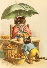 'The Apple Lady' Charming Vintage Cat Greeting Card.