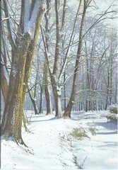 'Winter Woodland' Vintage Snowy Scenic Christmas Card