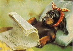Adorable Get Well Soon Card Featuring Poorly Dachshund