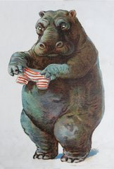 'A Tight Fit' Fun Hippopotamus Greeting Card with Vintage Hippo Illustration
