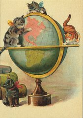 'The Geography Lesson' Adorable Kitten Greeting Card