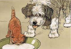 'What About Me?' Fun Vintage Illustration of Cat and Dog