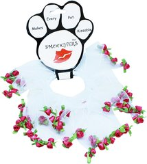 Smoochers Dog Collars: Smoocher Dog Collar in Bright Pink or White