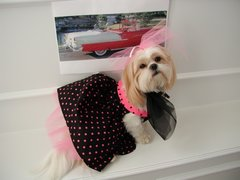 Dog Dresses: I Love Lucy Cotton Dog Dress with Petticoat Handmade by Alexis USA