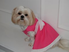 Dog Dresses: In the Hot Pink Cotton Dog Dress by Alexis Creations USA