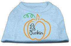 Dog Shirts: LIL PUNKIN Screen Print Dog Shirt in Various Colors & Sizes by Mirage