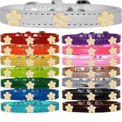 Dog Collars: Cute Dog Collars with Cute GOLD FLOWER Widgets on Croc Dog Collar in Different Colors & Sizes USA