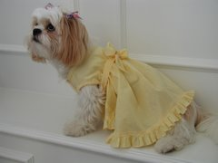 Dog Dresses: Bright Yellow Summer Sunshine Gingham Dog Dress by Alexis USA