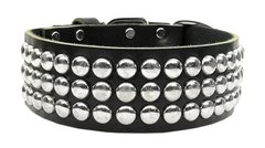 Stud Dog Collars: Genuine Leather Stud Dog Collar Mirage Pet Products USA - TOKYO