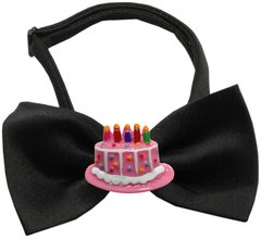 Dog Bow Ties: Chipper Birthday Cake Bow Tie on White or Black Band by Mirage