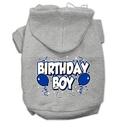 Dog Hoodies: BIRTHDAY BOY Screened Print Dog Hoodie by Mirage Pet Products USA