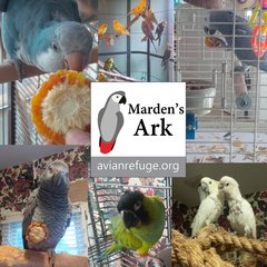 Marden's Ark Avian Refuge