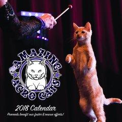 2018 Amazing Acro-Cats Calendar!