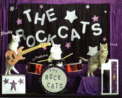 "8x10"" Color Photo of The Rock Cats!"