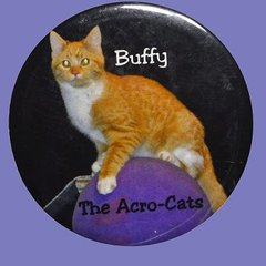 "Buffy, ""The Wallflower"" Button/Magnet"