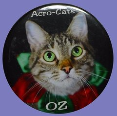 "Oz ""The Clown""  Button/Magnet"