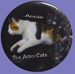 Annie AcroCat Button/Magnet