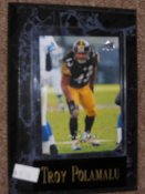 Troy Polamalu Sports Plaque