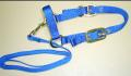 Sheep Halter with Lead