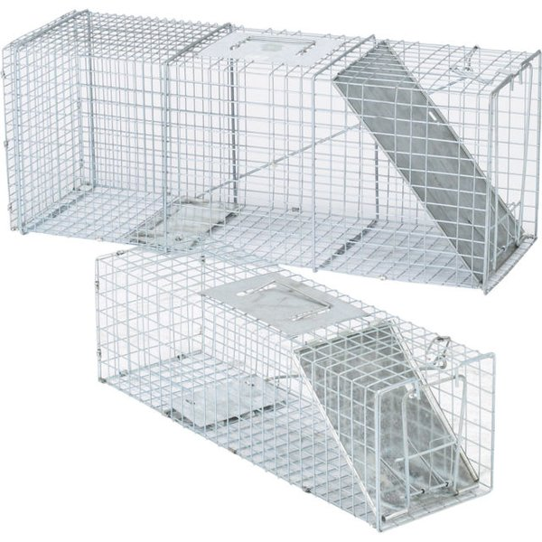 Live Animal Racoon, Squirrel, Live Trap and Cage