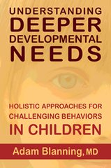 Understanding Deeper Developmental Needs Holistic Approaches for Challenging Behaviors in Children by Adam Blanning