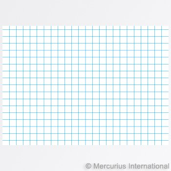 Graph Paper Main Lesson Books | Meadowsweet Naturals