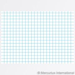 Graph Paper Main lesson books