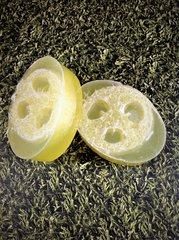 Loofah Citrus Soap