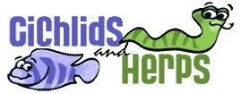 Cichlids and Herps Store