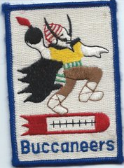 USAF PATCH FOR SALE 20 BOMB SQUADRON