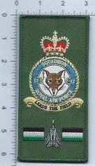 RAF PATCH 9 SQUADRON FACS STYLE CREST GR-4 TORNADO RAF MARHAM