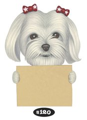 "Maltese with Bows Print - 8.5"" x 11"""