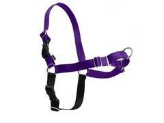Easy Walk Harness in Purple