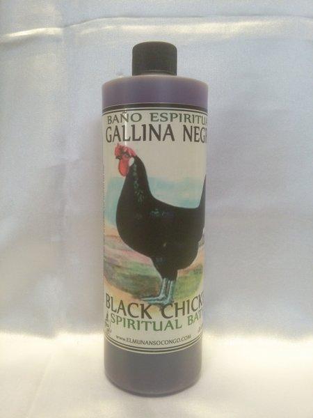 Gallina Negra _ Black Chicken