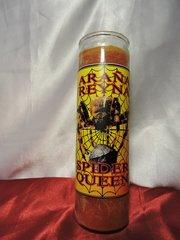 Araña Reyna - Spider Queen