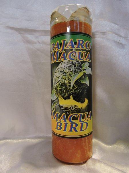 Pajaro Macua - Macua Bird