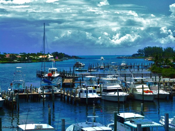 Jupiter inlet http for Jupiter inlet fishing