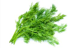 Wild Fernleaf Dill Infused Extra Virgin Olive Oil