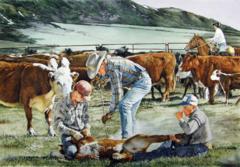 """""""Branding at Elk Mountain"""" - 22 x 15 Original Watercolor"""