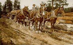 """Four Horse Power"" 15 x 22 Original Watercolor"