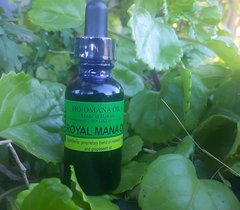 Small Royal Mana Oil